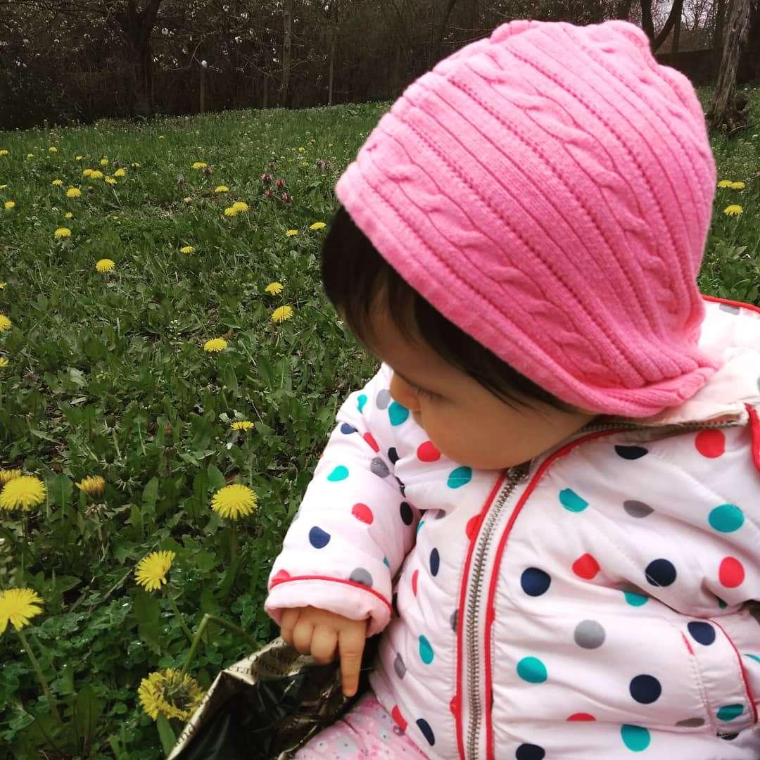 Пролетно ни е : запознаваме се с цветята.