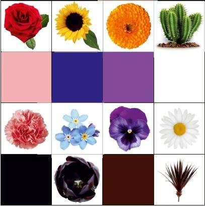 Сортер за упражняване на цветовете