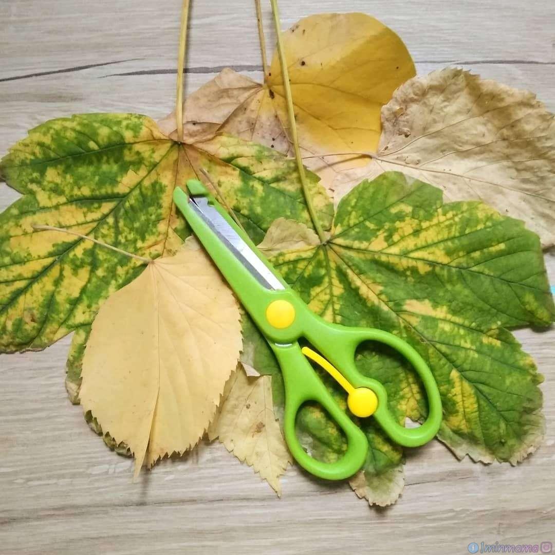 Учим се да режем по линия върху листа